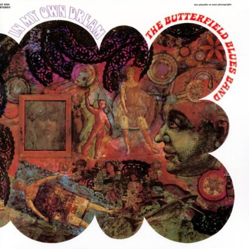 Butterfield Blues Band In My Own Dreams