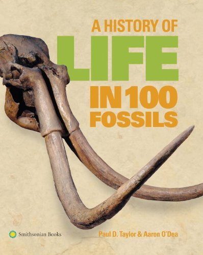 Paul D. Taylor A History Of Life In 100 Fossils