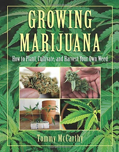 Tommy Mccarthy Growing Marijuana How To Plant Cultivate And Harvest Your Own Wee