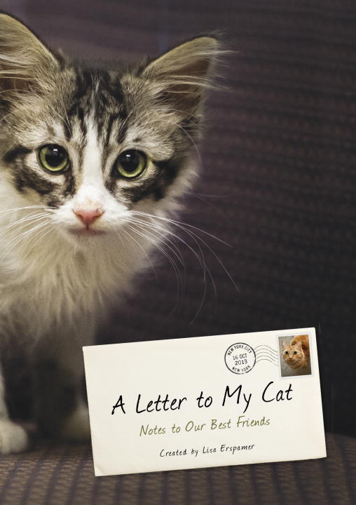 Lisa Erspamer A Letter To My Cat Notes To Our Best Friends