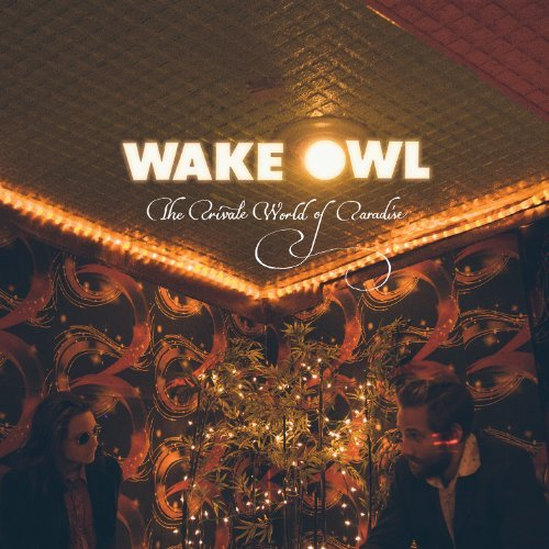 Wake Owl Private World Of Paradise