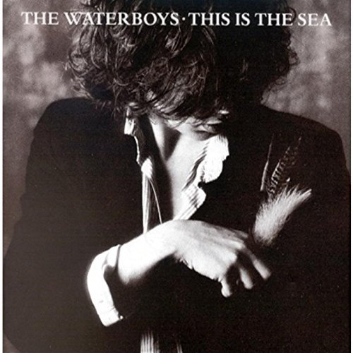 Waterboys This Is The Sea