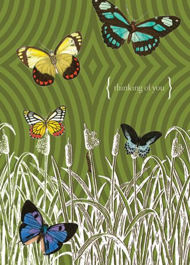 Greeting Card Butterflies In Field
