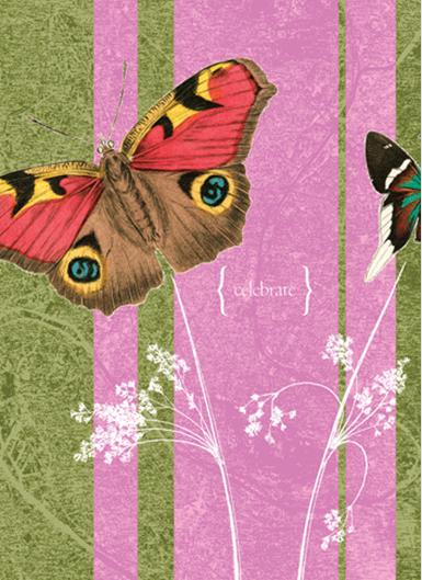 Greeting Card Butterflies On Pink