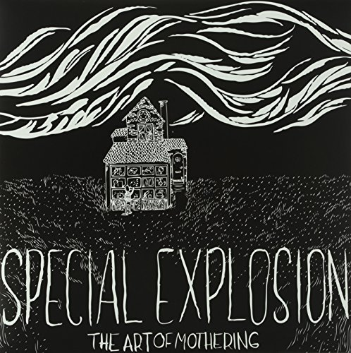 Special Explosion Art Of Mothering