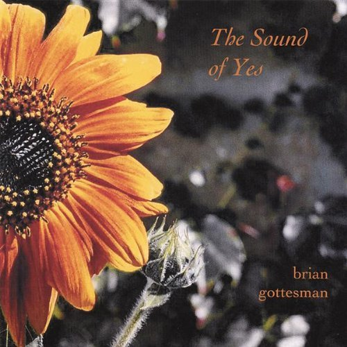 Brian Gottesman Sound Of Yes