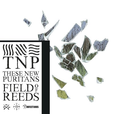 These New Puritans Field Of Reeds 2 Lp
