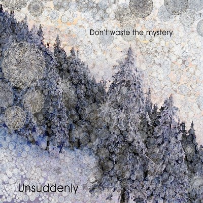 Unsuddenly Don't Waste The Mystery