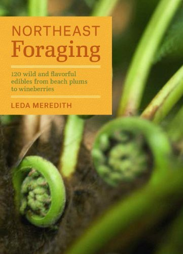Leda Meredith Northeast Foraging 120 Wild And Flavorful Edibles From Beach Plums T
