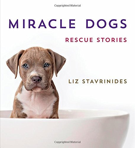 Liz Stavrinides Miracle Dogs Rescue Stories