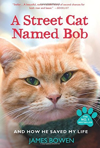 James Bowen A Street Cat Named Bob And How He Saved My Life