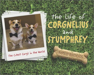 Susie Brooks The Life Of Corgnelius And Stumphrey The Cutest Corgis In The World