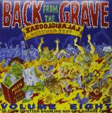 Back From The Grave Vol. 8 Back From The Grave (2xlp)