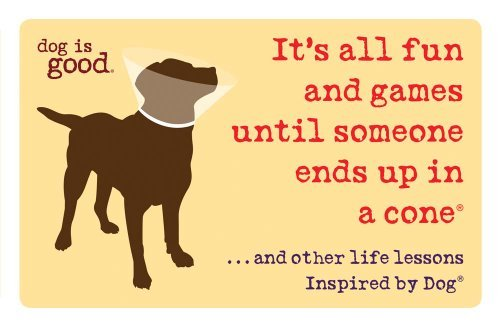 Dog Is Good(r) It's All Fun And Games Until Someone Ends Up In A ...And Other Life Lessons Inspired By Dog(r)