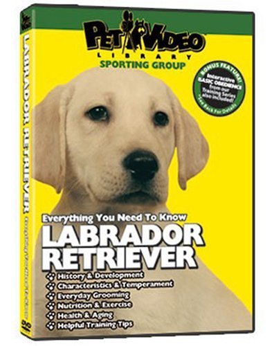 Leading Dog Experts Leading Dog Experts Labrador Retriever