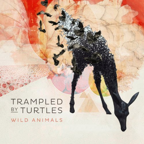 Trampled By Turtles Wild Animals