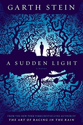 Garth Stein A Sudden Light