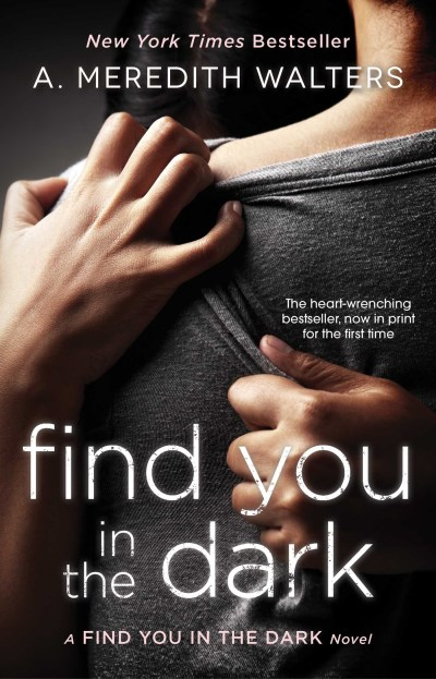 A. Meredith Walters Find You In The Dark
