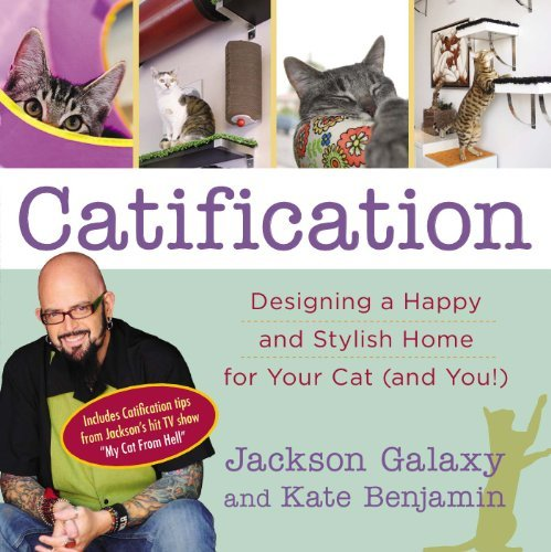 Jackson Galaxy Catification Designing A Happy And Stylish Home For Your Cat (