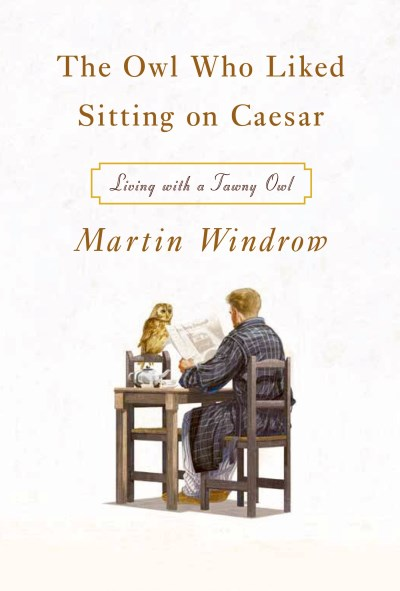 Martin Windrow The Owl Who Liked Sitting On Caesar Living With A Tawny Owl
