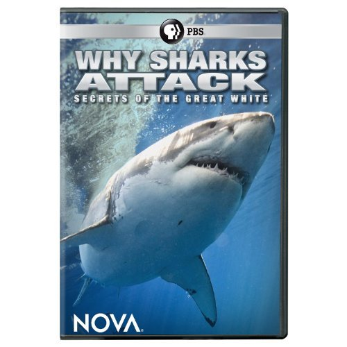 Nova Why Sharks Attack DVD