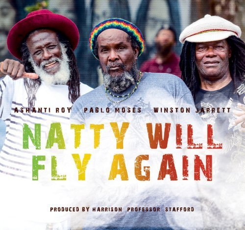 Various Artist Natty Will Fly Again