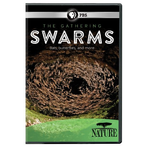 Nature The Gathering Of Swarm DVD