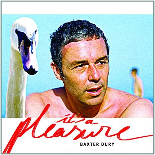 Baxter Dury It's A Pleasure