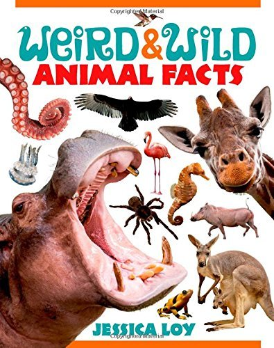 Jessica Loy Weird & Wild Animal Facts