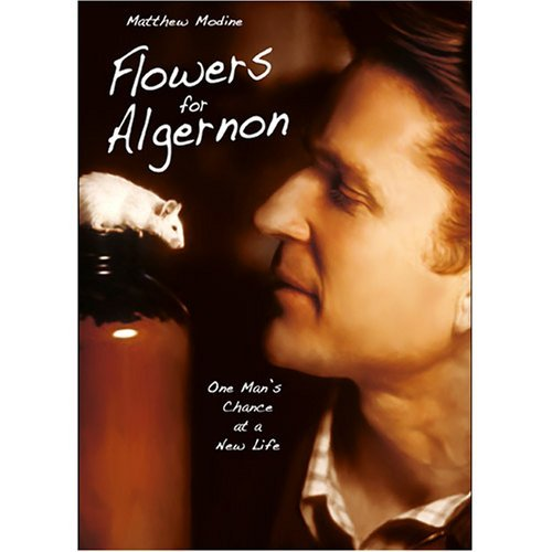 Flowers For Algeron Modine Williams Nr