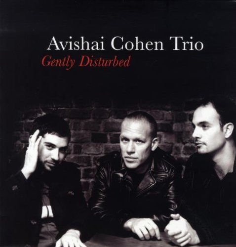 Cohen Avishai Gently Disturbed