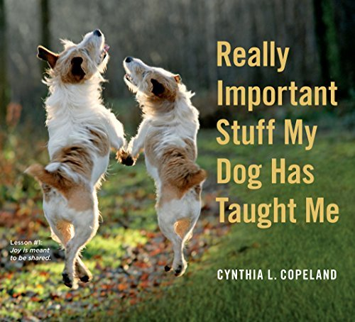 Cynthia L. Copeland Really Important Stuff My Dog Has Taught Me