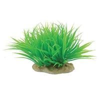 "Pure Aqu Micro Sword Mound 6"""" Pure Pets Aquatic Plant Microsword 4 5 Inch Green"