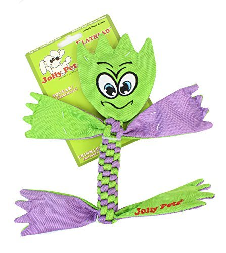 Jolly Flat Head Md Jolly Pets Flatheads Dog Toy Medium