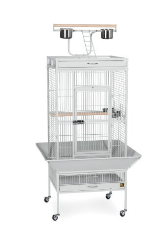 Prevue Cage Pewter 24x20x30 Prevue Pet Products Wrought Iron Select Bird Cage 3152w Pewter 24 Inch By 20 Inch By 60 Inch *prevue Cage Pewter 24x20x30