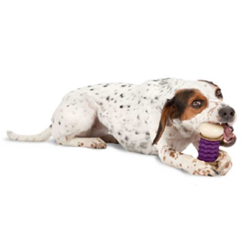 "Prem Busy Buddy Nobbly Nub Lg Busy Buddy Nobbly Nubbly Dog Toy Size Large (8"" H X 4"" W X 3"" L)"