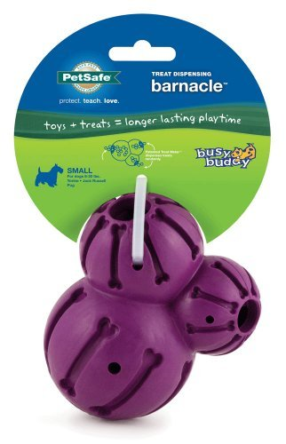 Prem Busy Buddy Barnacle Small Petsafe Busy Buddy Barnacle Dog Toy Small