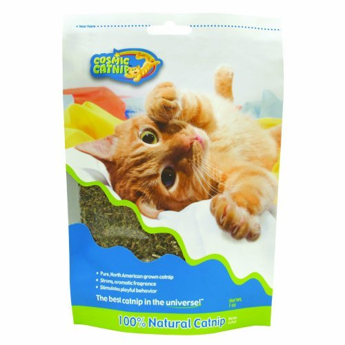 Cosmic Cat Catnip 1oz Gusset Ourpets Catnip Bag 1 Ounce Guesseted Bag