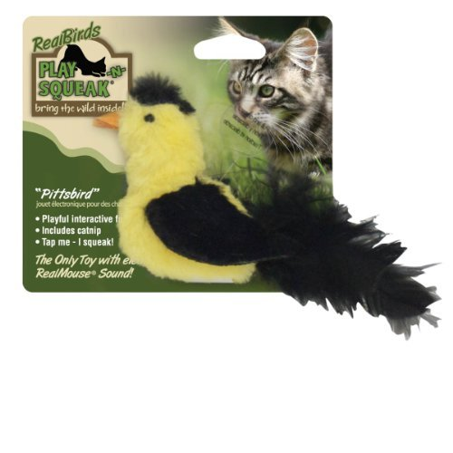 Our Realbirds Pittsbird Ourpets Real Birds Pittsbird Squeaking Cat Toy