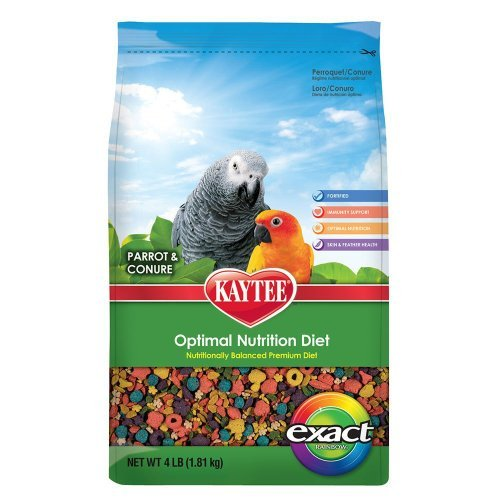 Kt Exact Rainbow Parrot 4lb Kaytee Exact Rainbow Premium Daily Nutrition For Parrots And Conures 4 Pound Bag