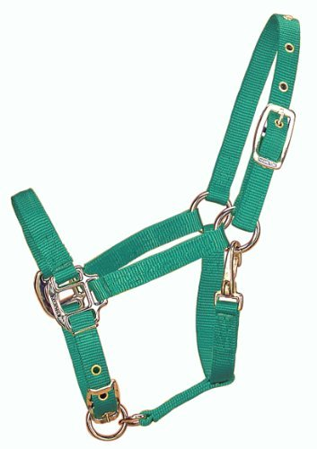 Zzequ Chin Halter Weanling Hun Hamilton 3 4 Inch Adjustable Chin Halter With Snap 200 To 300 Pound Weanling Green