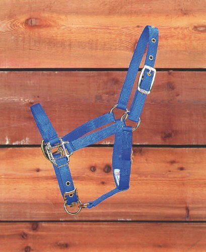 Zzequ Halter Suckling Blue Adjustable Chin Halter Foal Color Blue