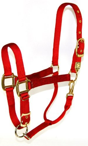 Zzequ Chin Halter Nylon Red Yr Hamilton 1 Inch Nylon Halter With Adjustable Chin Red Yearling Size (300 500 Lbs.)