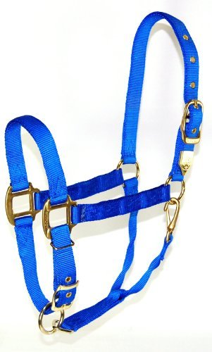 Zzequ Chin Halter Nylon Blue Y Hamilton 1 Inch Nylon Halter With Adjustable Chin Blue Yearling Size (300 500 Lbs.)