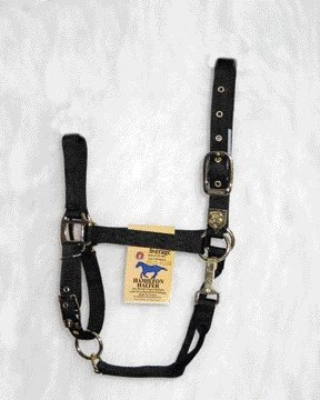Equ Chin Halter Nylon Black Av Halter Adj. Chin W Snap Color Black; Size Average (catalog Category Equine Tack & Other Equipment Halters & Leads Nylon)