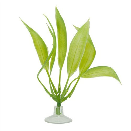 Hag Marina Plant Amazon Sword Marina Betta Kit Plastic Plant Amazon Sword