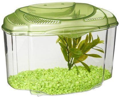 Marina Betta Pals Green Marina Betta Pals Kit Green