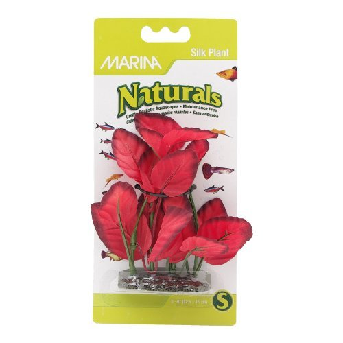 Marina Naturals Red Silk Plant Hagen Marina Naturals Foreground Silk Plant Small Red