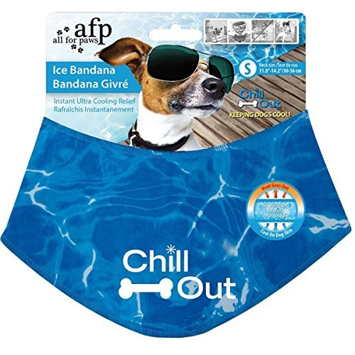Afp Chill Out Ice Bandana Sm All For Paws Chill Out Ice Bandana Khlendes Scarf For Dogs S