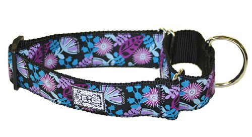 Rc Pet Products 1 1 2 Inch All Webbing Martingale Dog Collar Small Calypso All Webbing Training Collar S Calypso
